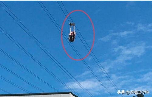 女子在高空索道坠落死亡,该景区连续两年被罚款,生命至上