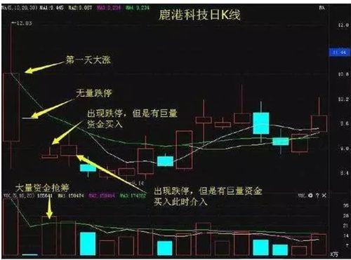 股票市场中如何选择板块?