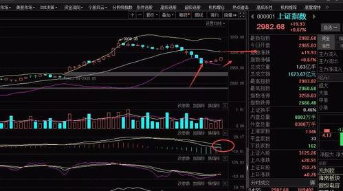 股票地位反弹是什么意思?