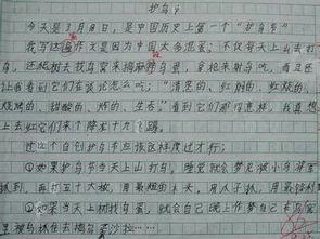 小学生关于环境保护的作文