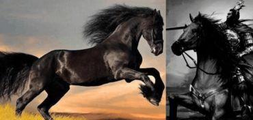 中国古代八大赫赫有名的战马, 赤兔排第三, 第一名非帝王不可骑