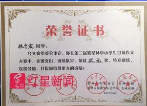 ▲宝哥林予宸获得的写作奖图片来源:红星新闻