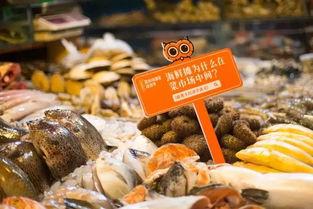 为发布新书薛兆丰现身菜市场遇见经济学主题展览