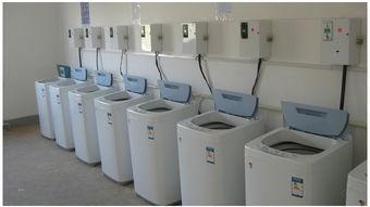 自动投币洗衣机怎么用