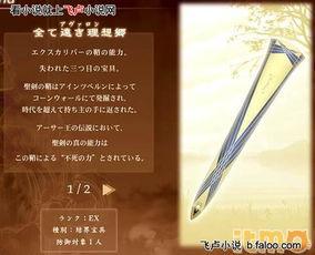 无限综漫 圣剑之鞘阿瓦隆
