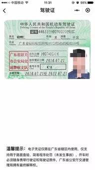 人大代表提议取消纸质驾驶证,网友 早该如此了