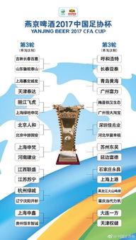 津门双雄足协杯对手确定,权健战老冤家,泰达将与业余队交锋