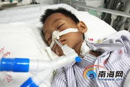 海口 母亲死在出租屋内 9岁男孩躺旁边饿晕 组图