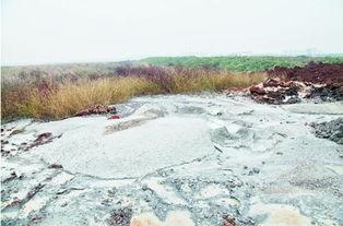 江夏道士湖曾被填湖险人间蒸发 现又遭污染