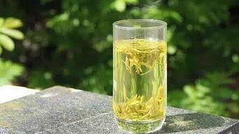 霍山黄大茶(黄茶是什么茶 黄茶的种类 黄茶的功效与作用)