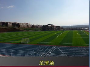 云南有關體育大學有哪些