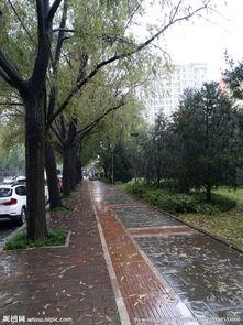 雨天的街道图片