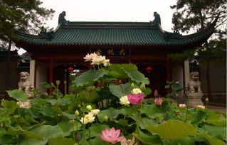 上海大观园有关的诗句