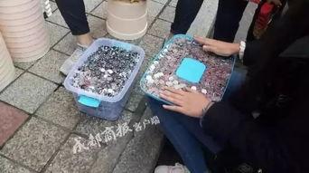 近日,离职两个月的潘老师领到了培训机构补发的押金1000元的1毛硬币.