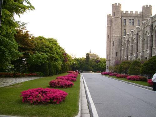 上海哪些大学与韩国 学校大全